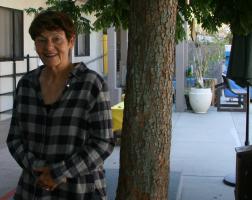 Profile image of Nancy Engstrom